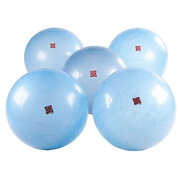 Bosu Ball Uk Stockists: BOSU Ballast Ball Club Pack